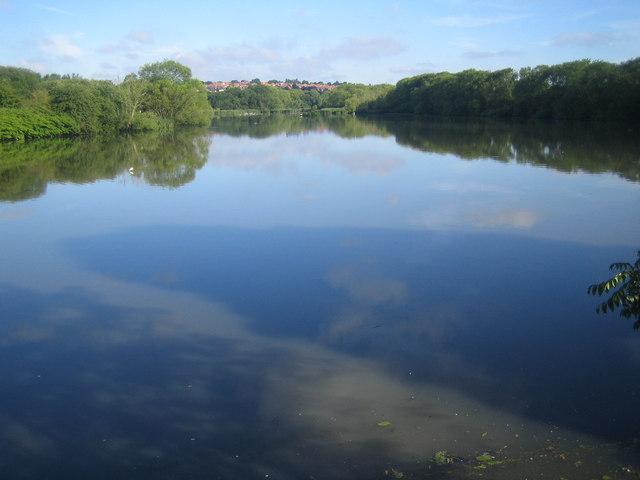 Brent Reservoir - geograph.org.uk - 501767