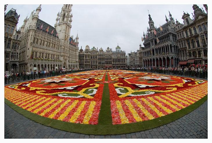 file bruxelles tapis fleurs jpg
