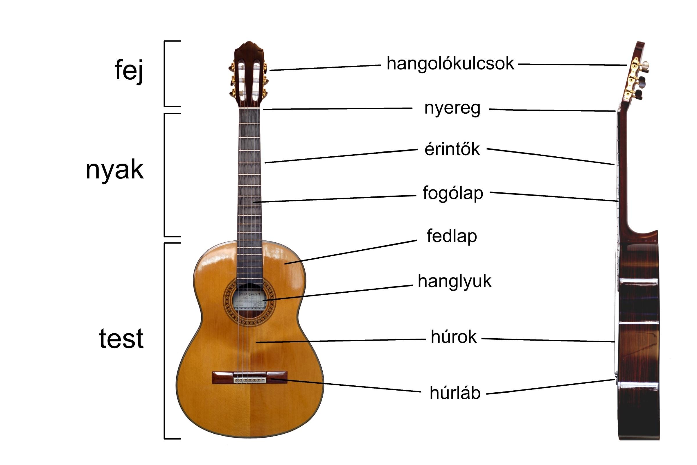 """Képtalálat a következőre: """"klasszikus gitár"""""""