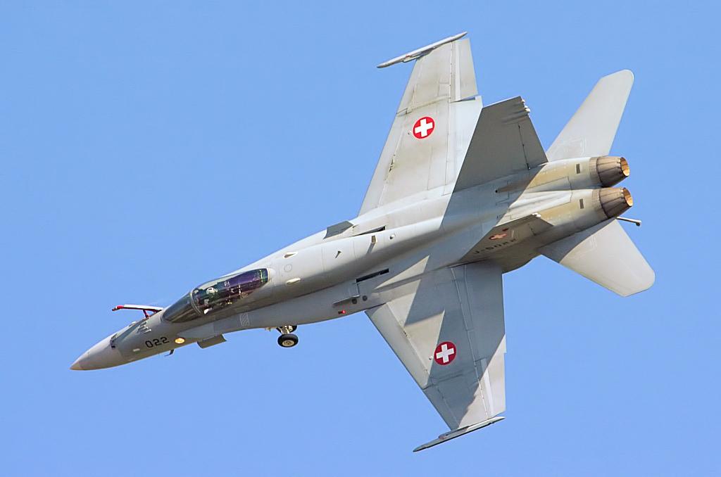 F18_Hornet_-_RIAT_2006_%282364894518%29.jpg