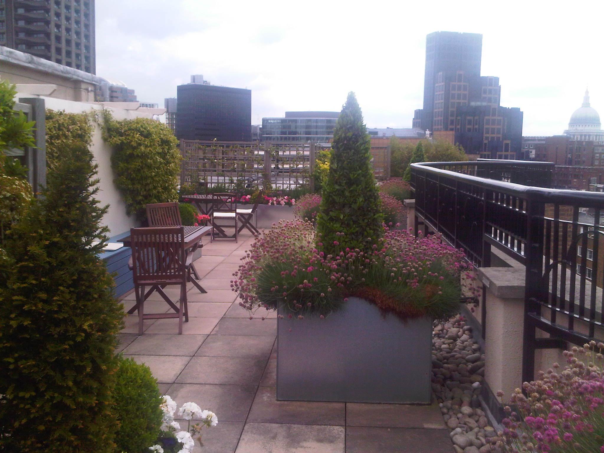 Florin court news for 42231 terrazzo terrace