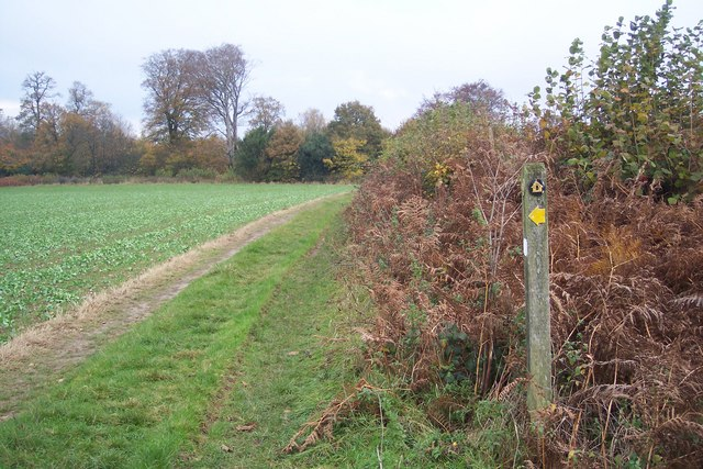 Footpath junction on the North Downs Way near Knockholt - geograph.org.uk - 1578087