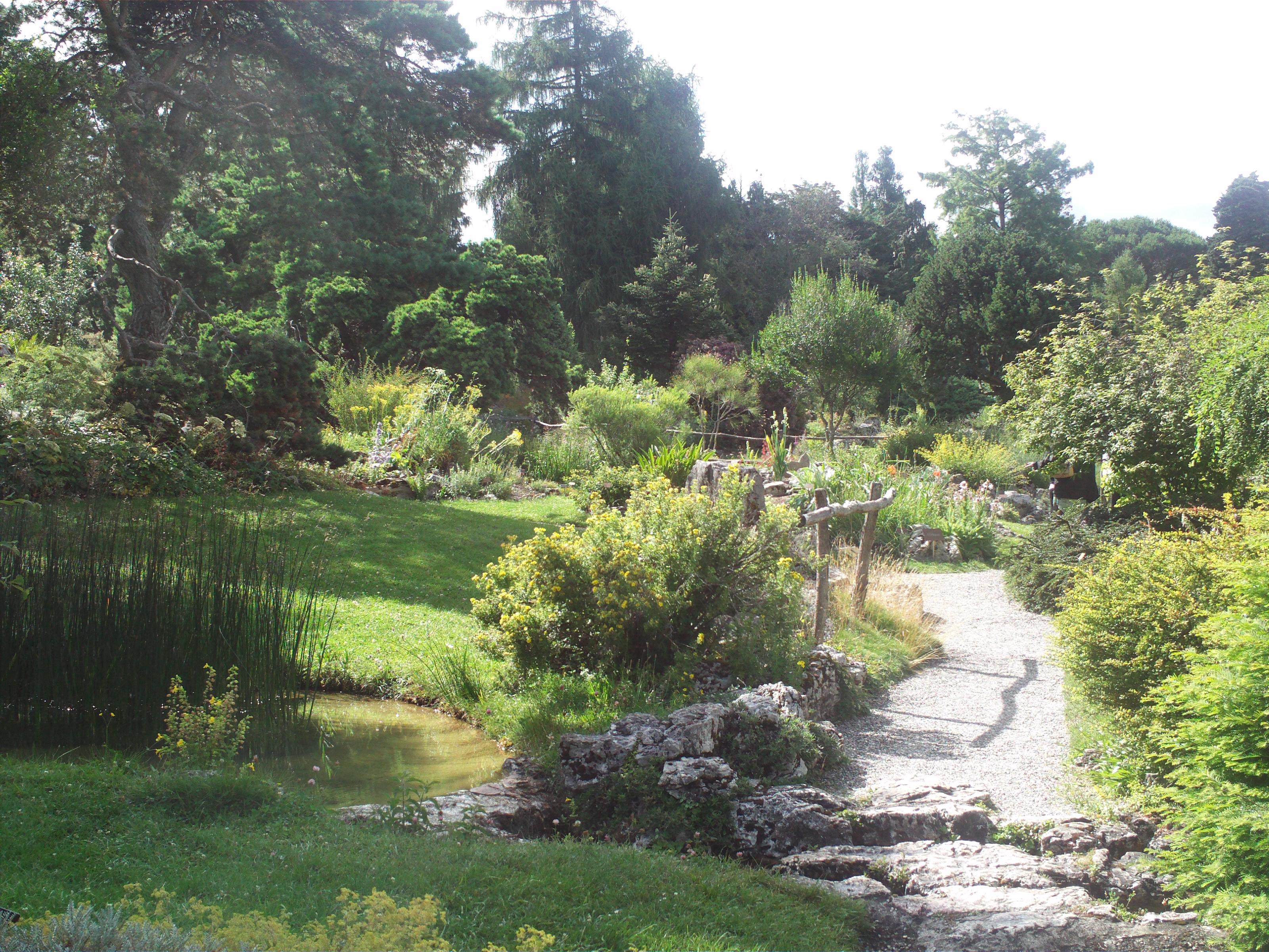 filegeneve jardin botaniquejpg - Jardin Botanique Geneve