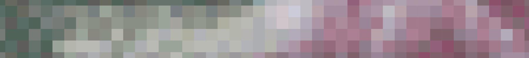 Header Pixels.jpg