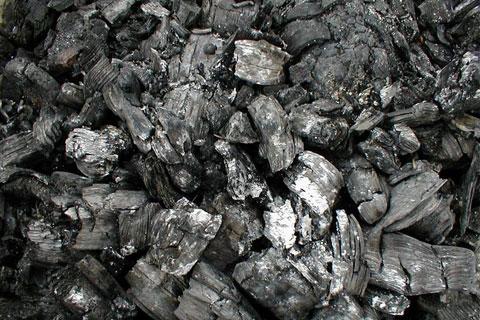 Img charcoal1-coal