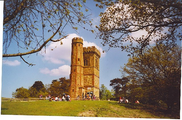 Leith Hill Tower - geograph.org.uk - 104994