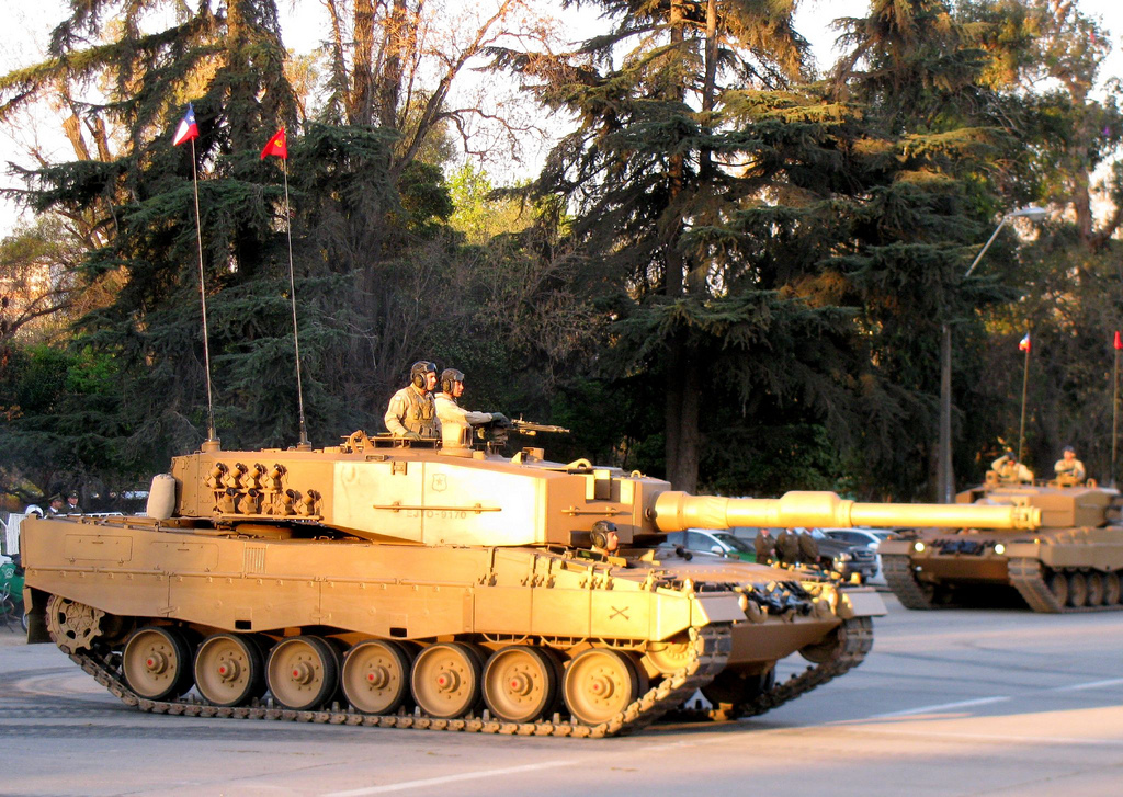 leopard en chile: