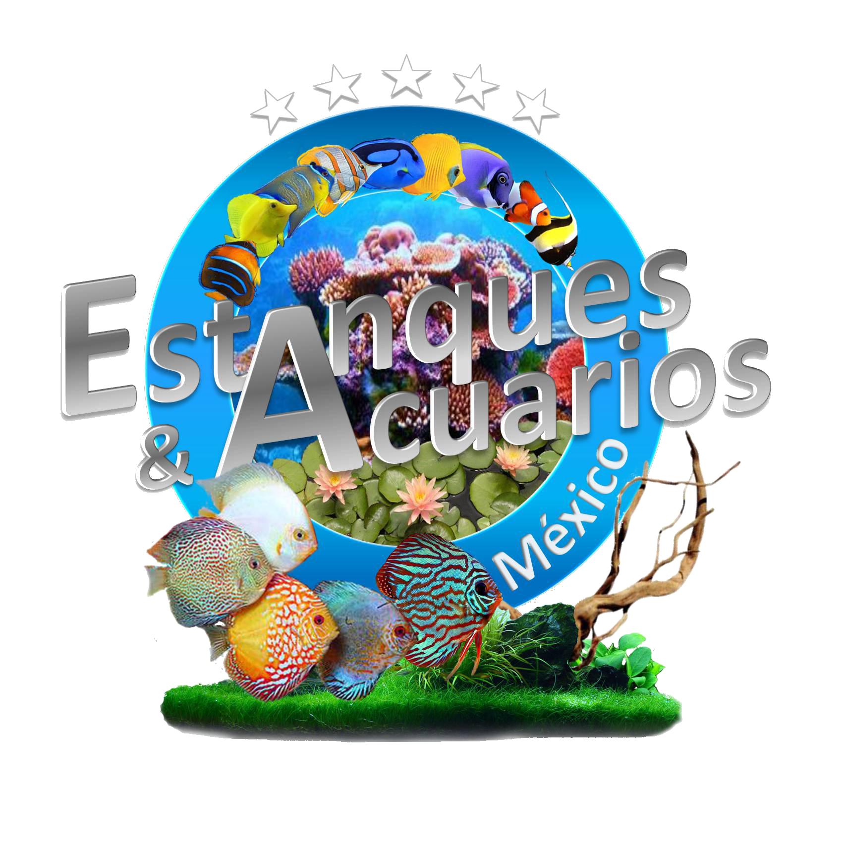 File logo oficial de estanques y acuarios de for Accesorios para estanques