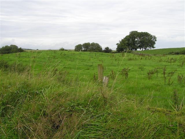 File:Magheralough Townland - geograph.org.uk - 1460548.jpg