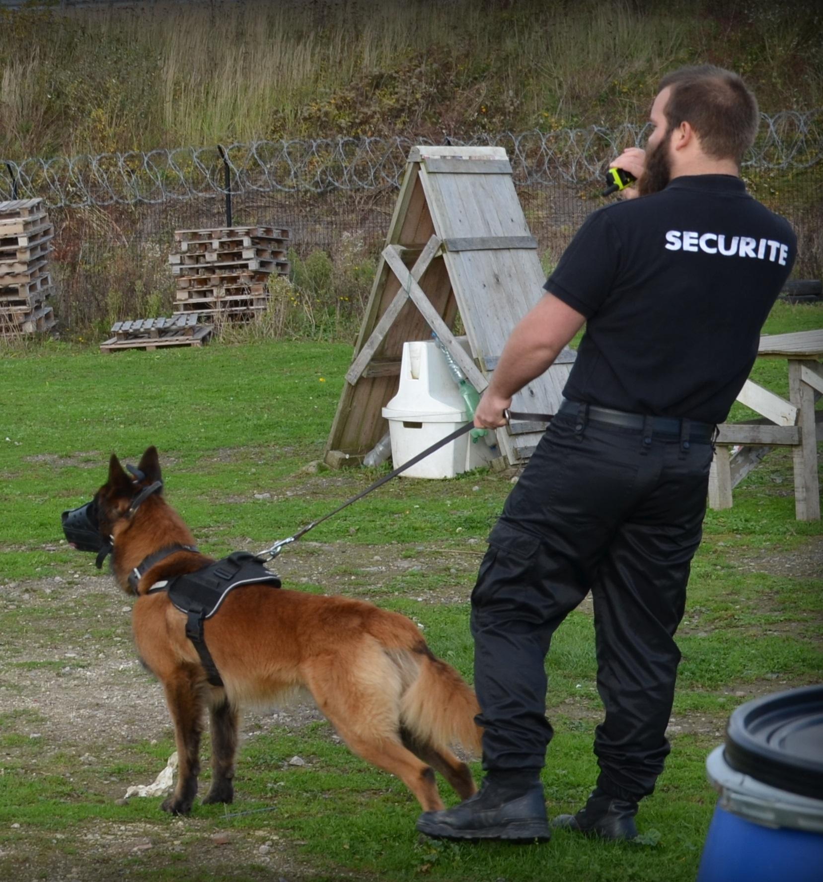 Fichier:Maitre chien.jpg — Wikipédia