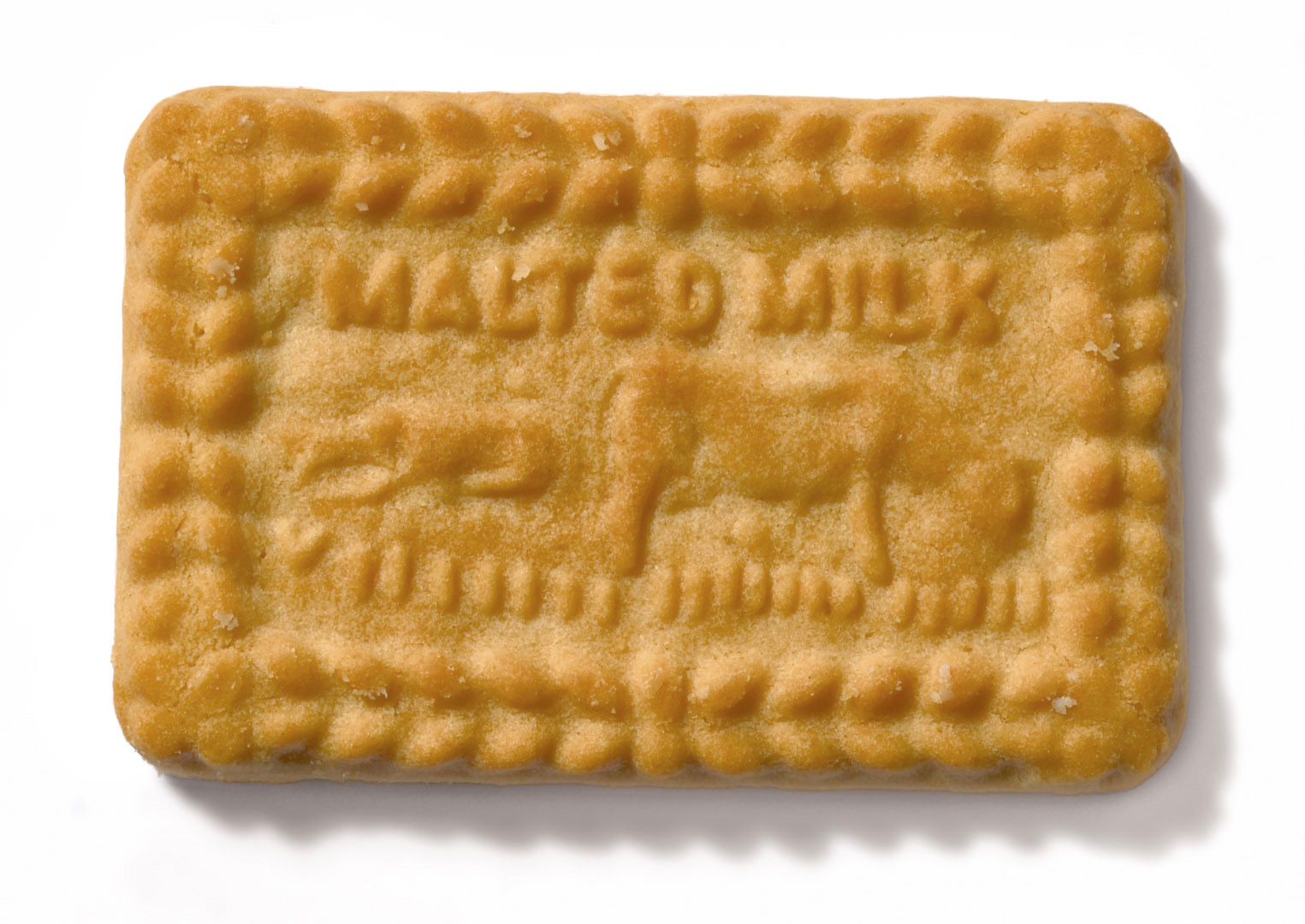 File:Malted Milk biscuit.jpg - Wikipedia