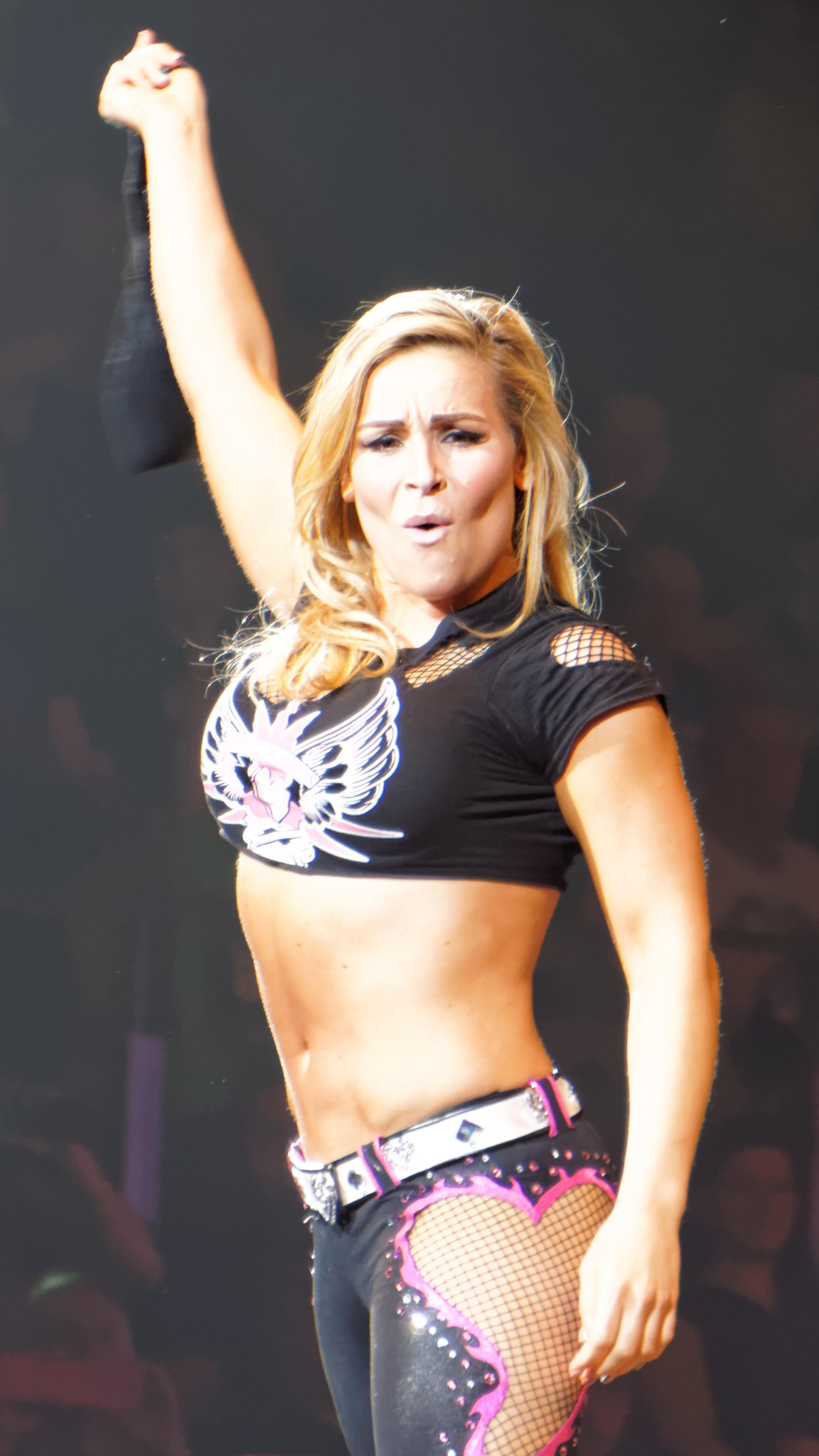 WWE 13  Wikipedia