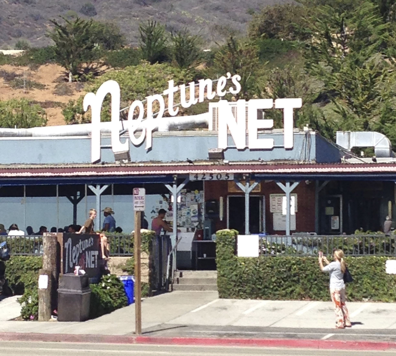 Neptune S Net Wikipedia