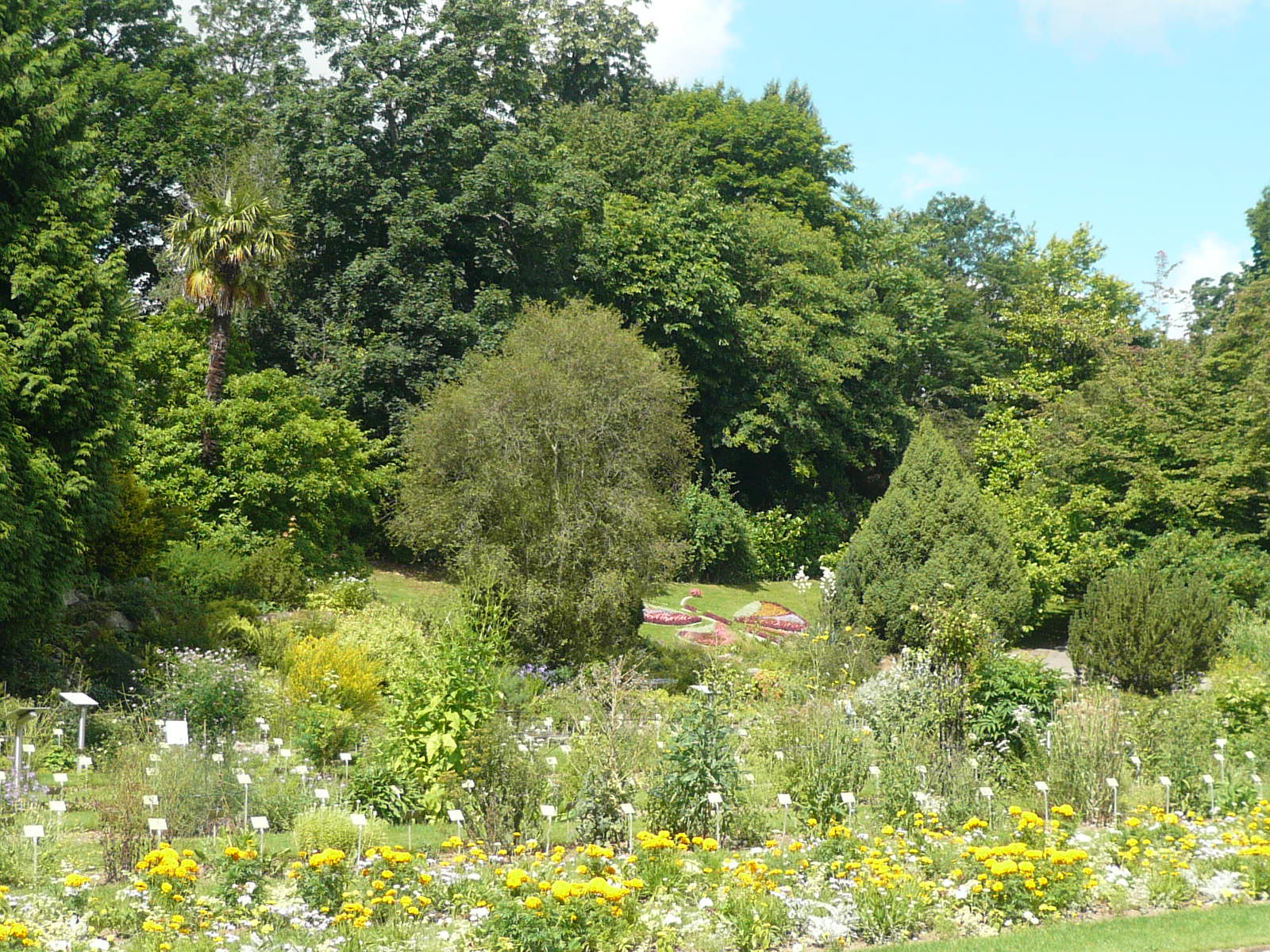 Fichier p1030229 le jardin des plantes a caen jpg wikip dia for Jardins de plantes