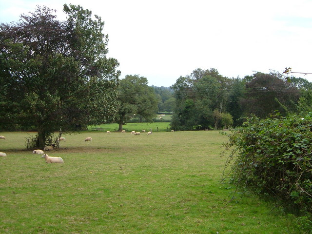 File:Parkland near Oaklands House - geograph.org.uk - 244953.jpg ...
