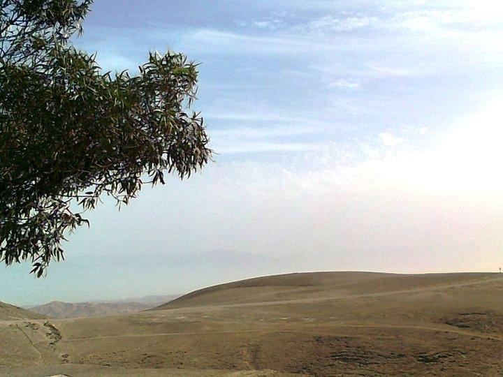 נוף המדבר