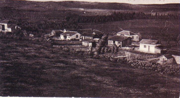 נס ציונה בתחילת המאה - 20