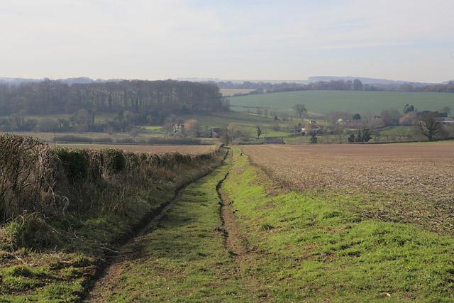 Prite Lane, Wayfarer's Walk, Tichborne - geograph.org.uk - 329507