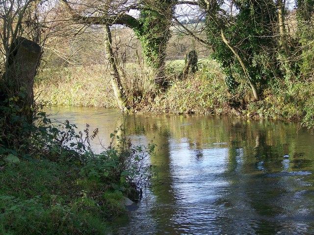 River Wylye, Steeple Langford - geograph.org.uk - 1061802