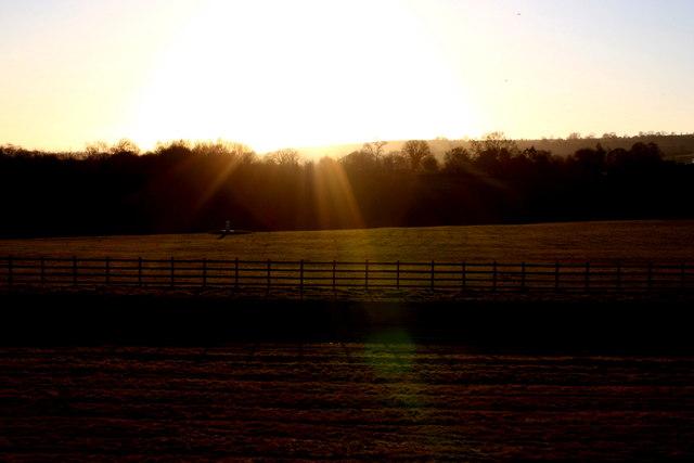 English: Sunset Field