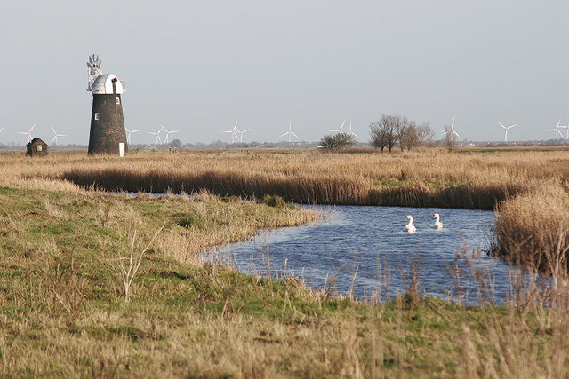 Swans on Halvergate Fleet - geograph.org.uk - 652568