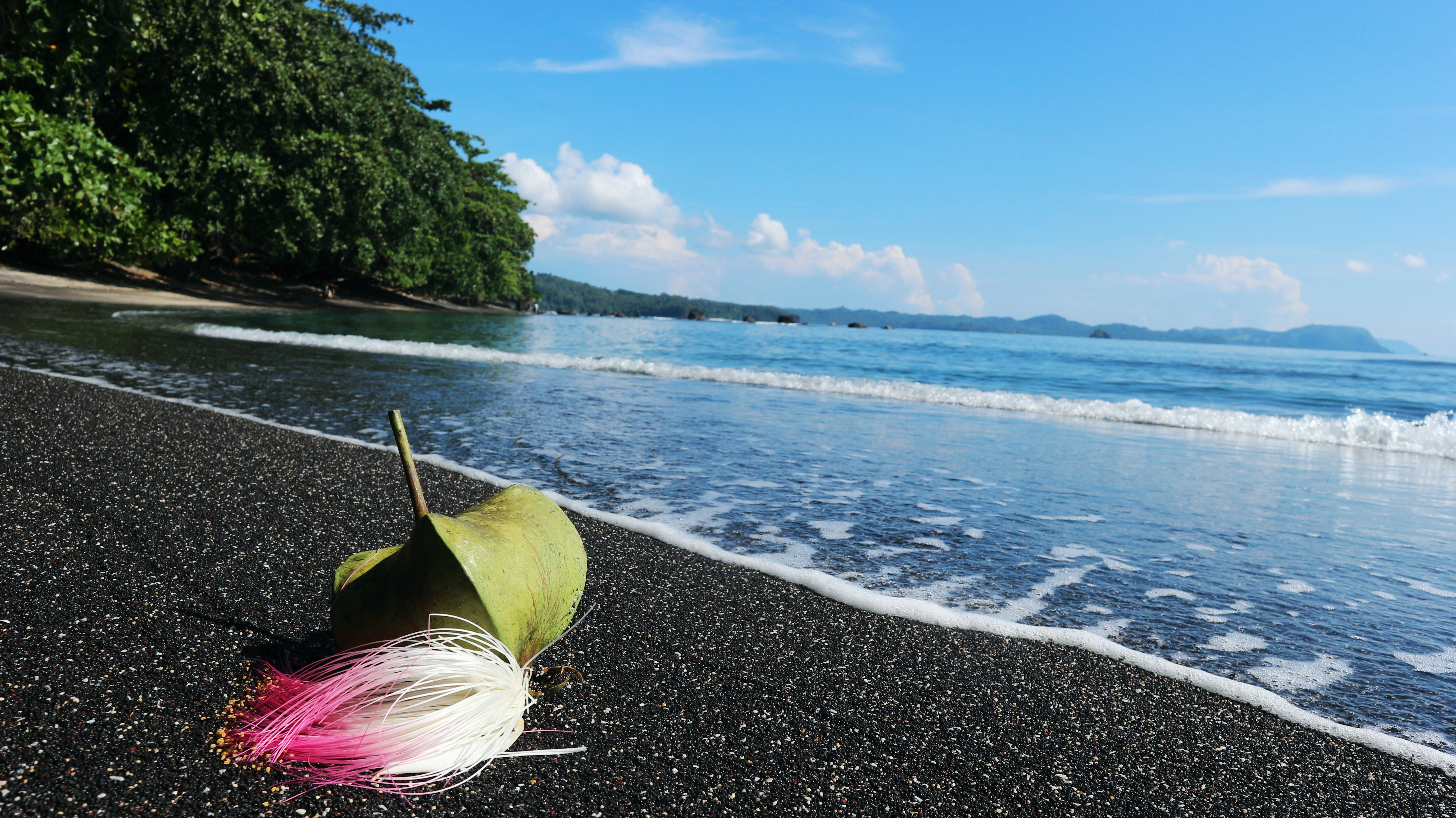 File Taman Wisata Alam Batuputih 2 Jpg Wikimedia Commons
