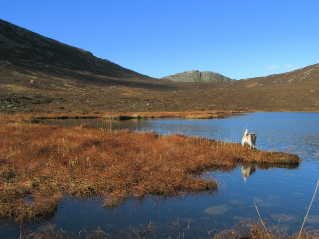 The Blue Lough - geograph.org.uk - 1139117