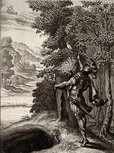 The golden bough by Wenceslas Hollar