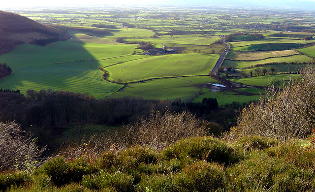 File:Views from Sutton Bank - geograph.org.uk - 165061.jpg