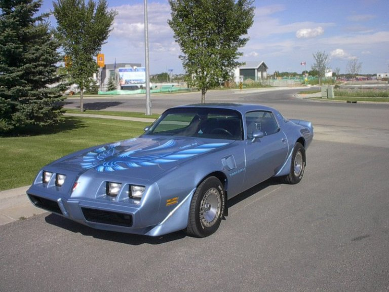 file 1981 pontiac trans am wikimedia commons. Black Bedroom Furniture Sets. Home Design Ideas