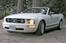 2009 Mustang small.jpg