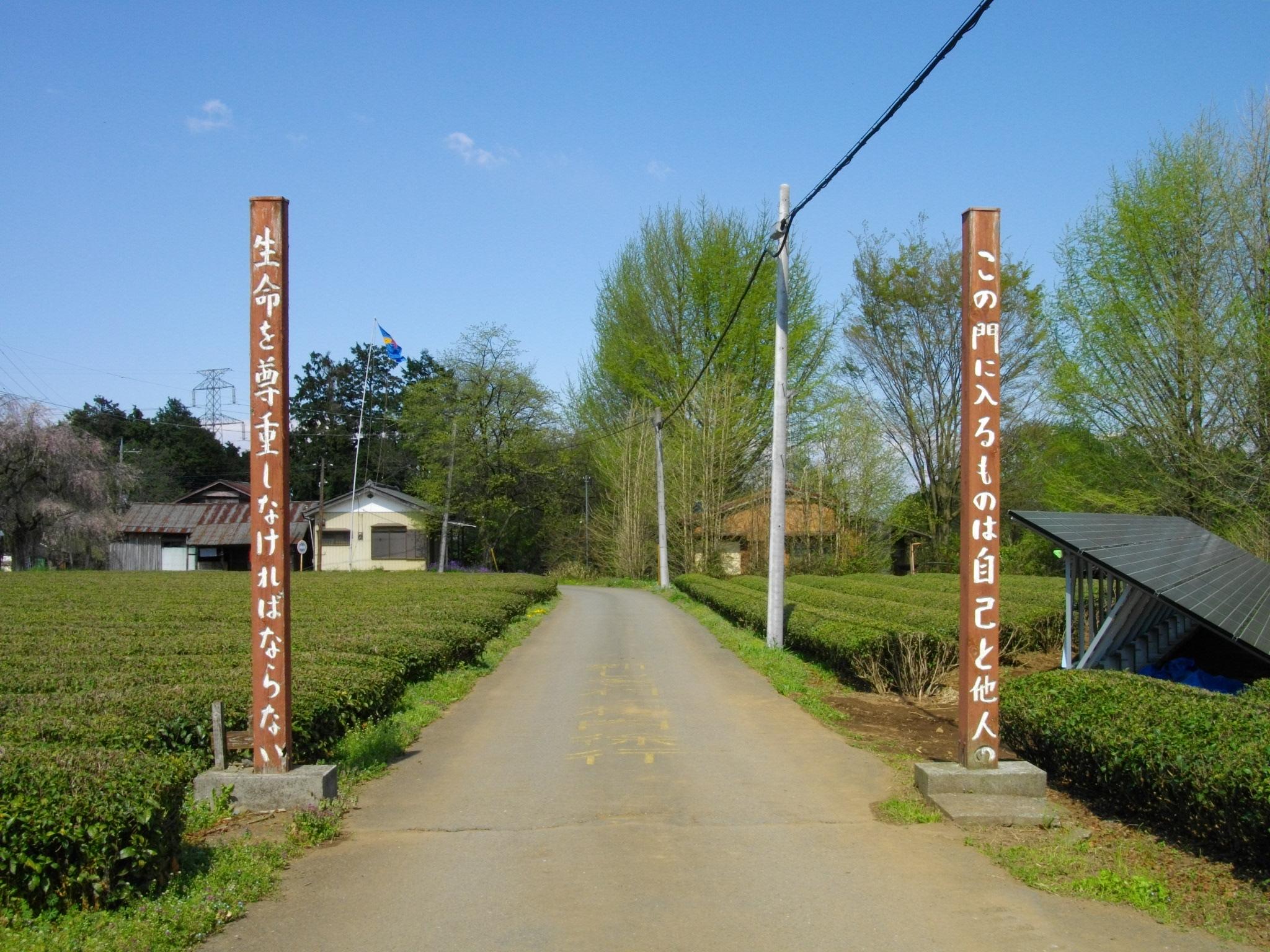 「武者小路実篤 新しき村」の画像検索結果