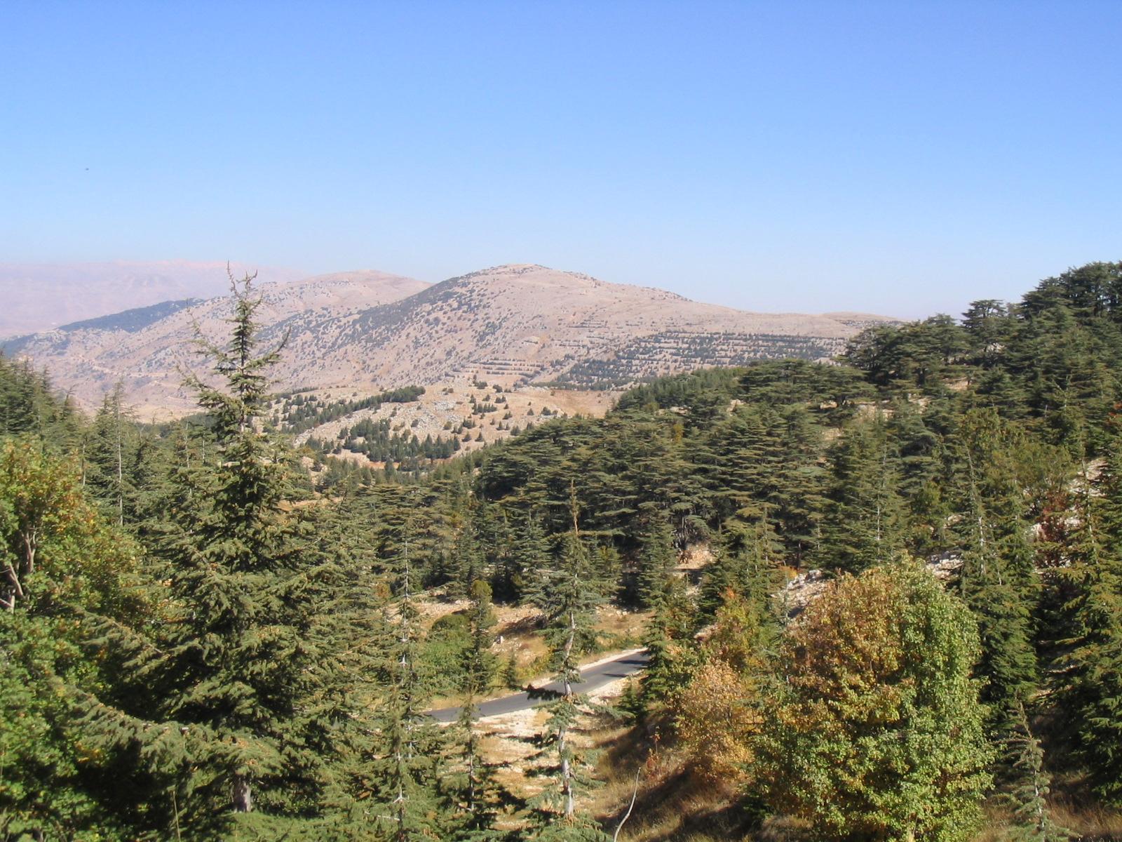 التعريف بلبنان كبلد سياحي المعلومات Barouk_Mountain.JPG
