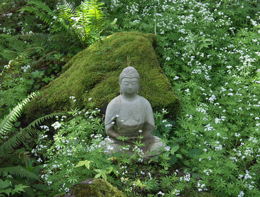 File:Buddha in garden.jpg - Wikimedia Commons