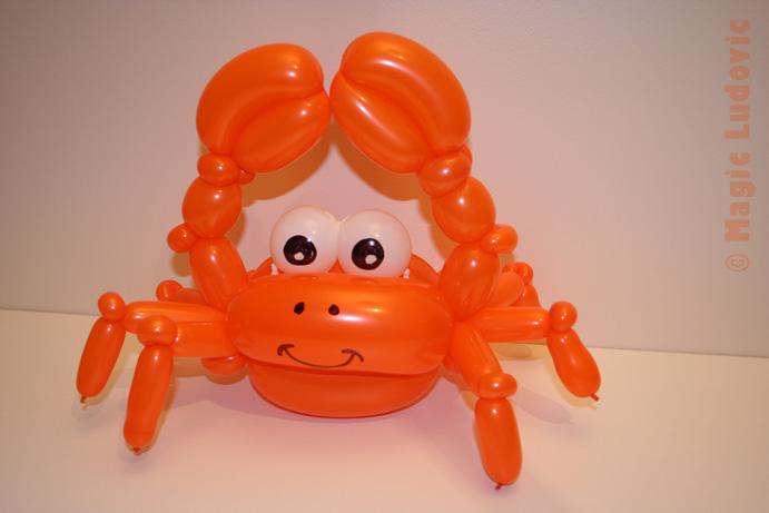 file crabe orange wikimedia commons. Black Bedroom Furniture Sets. Home Design Ideas
