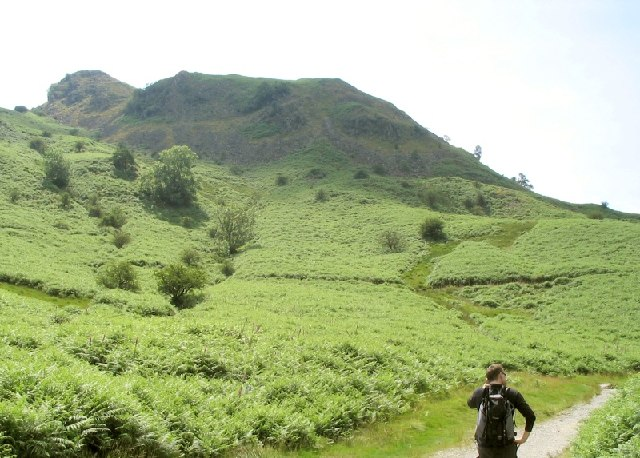 Ewe Crag on the north edge of Loughrigg Fell - geograph.org.uk - 30274