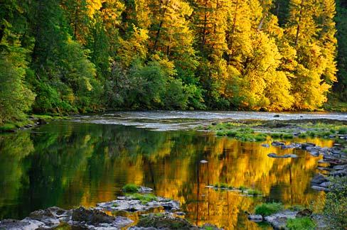 Oregon Fall Colors