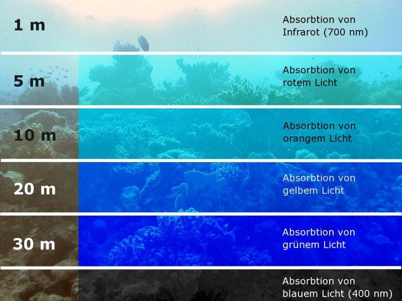 led strahler beleuchtung seite 9 aquascaping aquarium wasserpflanzen flowgrow. Black Bedroom Furniture Sets. Home Design Ideas