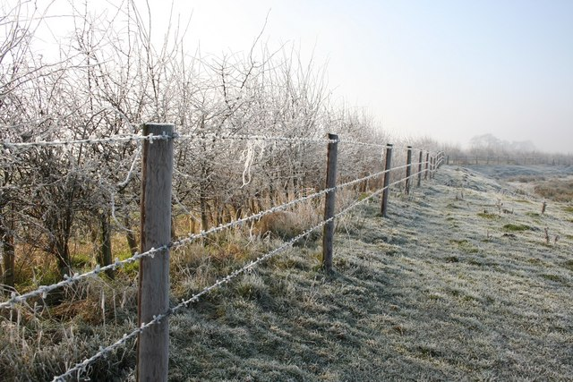 English: Frosty barbed wire Barbed wire fence ...