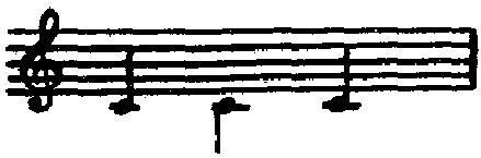 Hershkowitz-Anatomy-003.jpg
