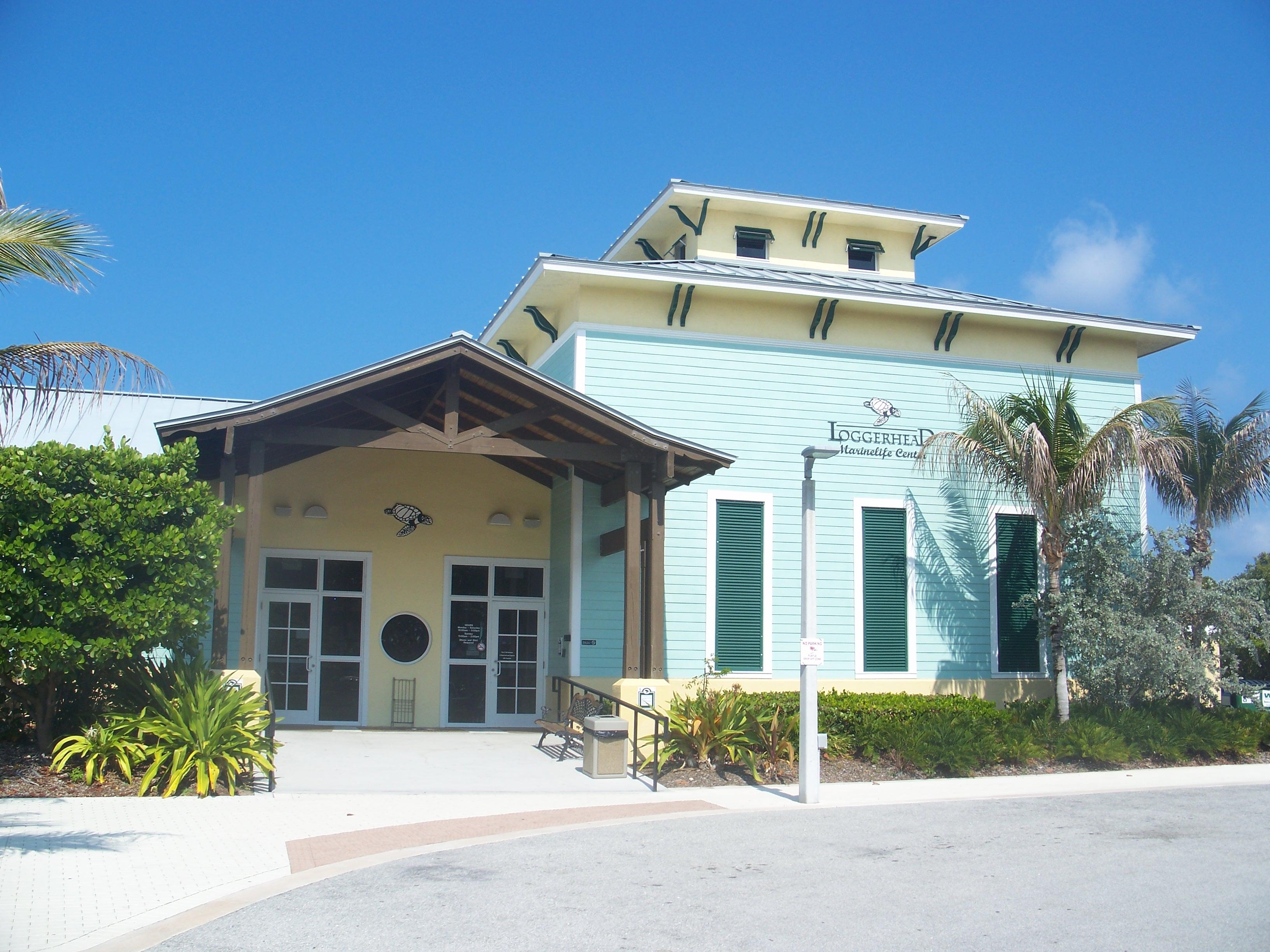 Marine Life Center Juno Beach Fl