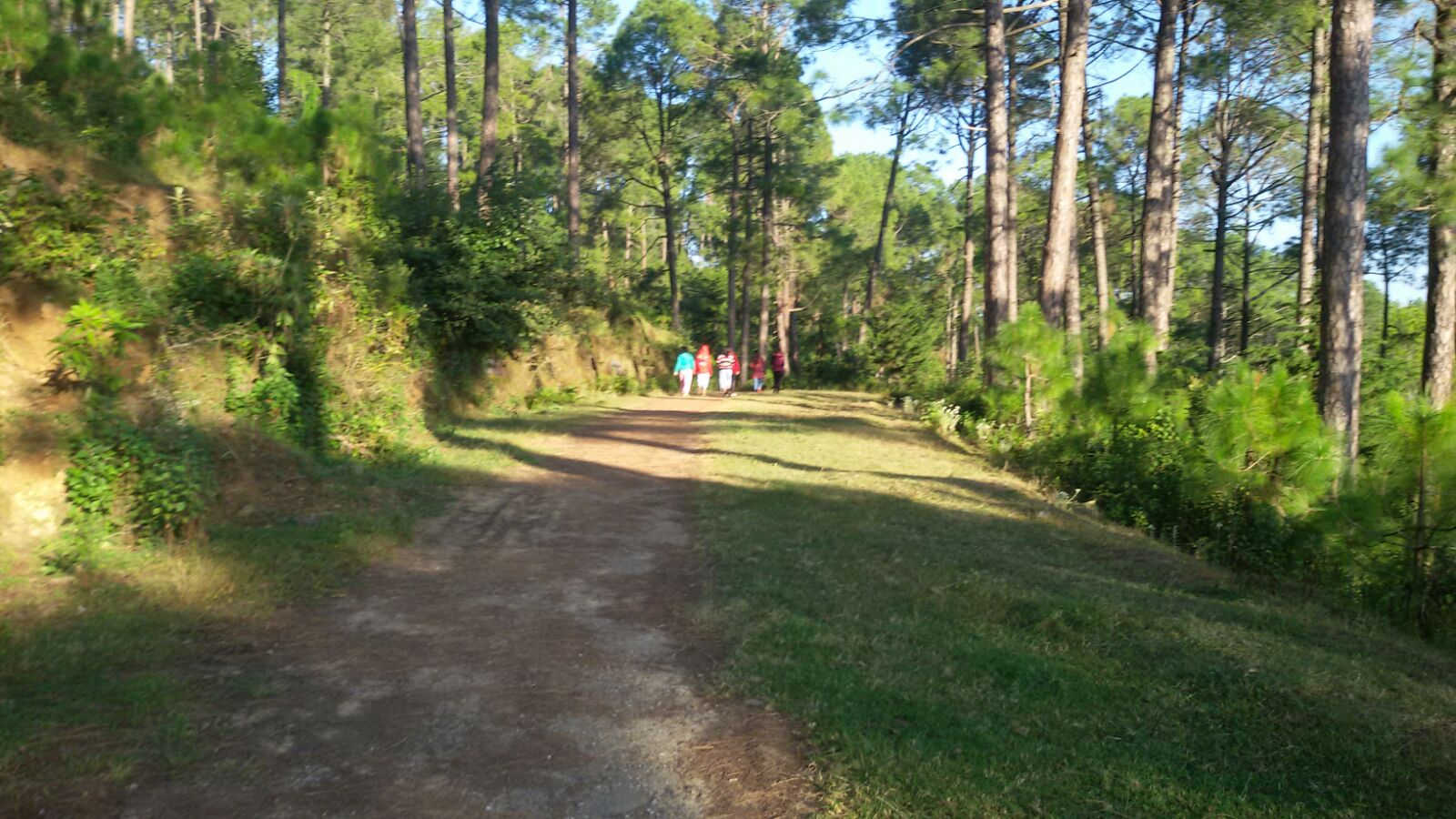 Kasauli Travel Guide 2020, How To Reach, Places To Visit & Much More! 5