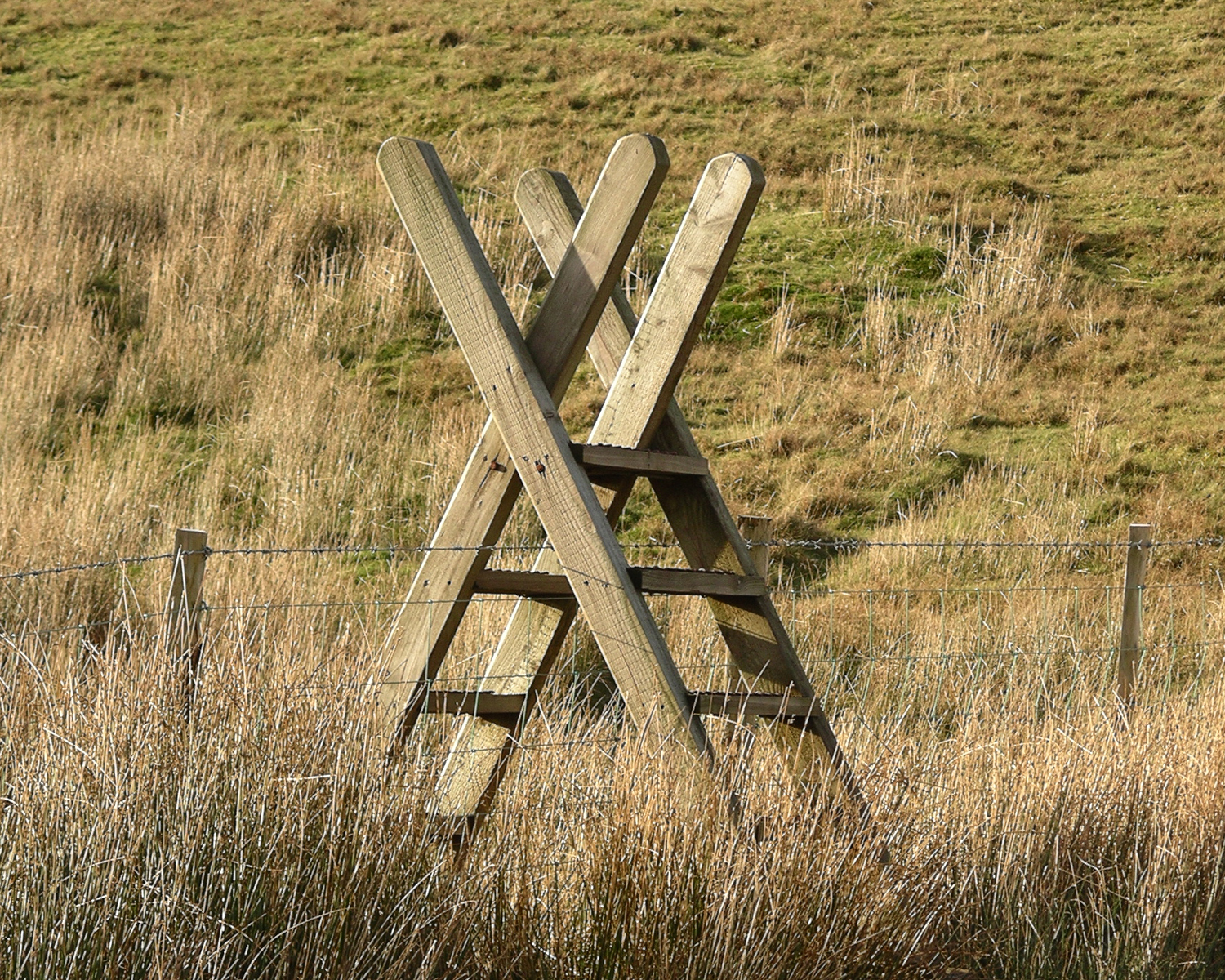 File Ladder Stile Snowdonia Jpg Wikipedia