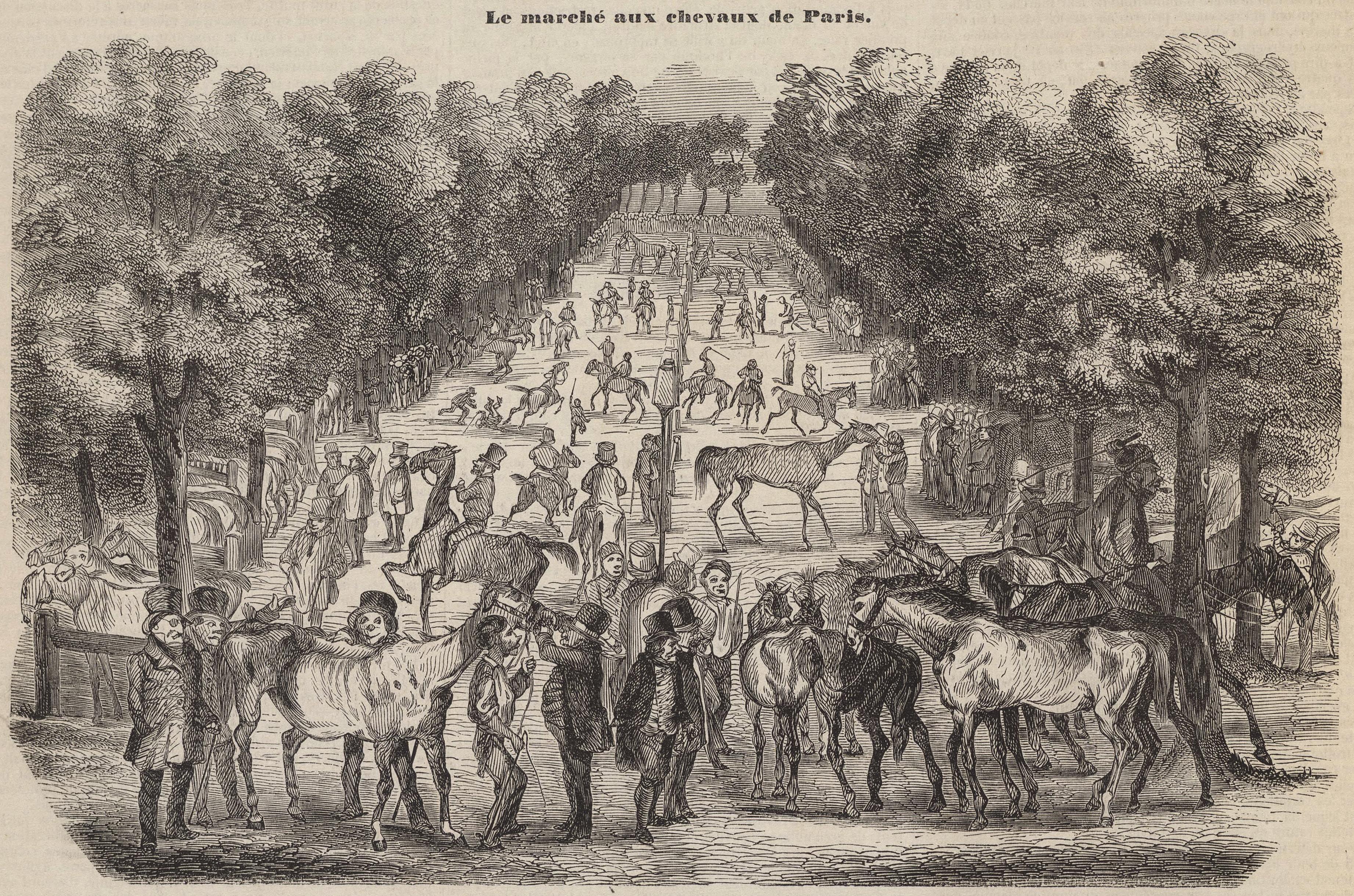 File:Le marché aux chevaux de Paris, 1853.jpg