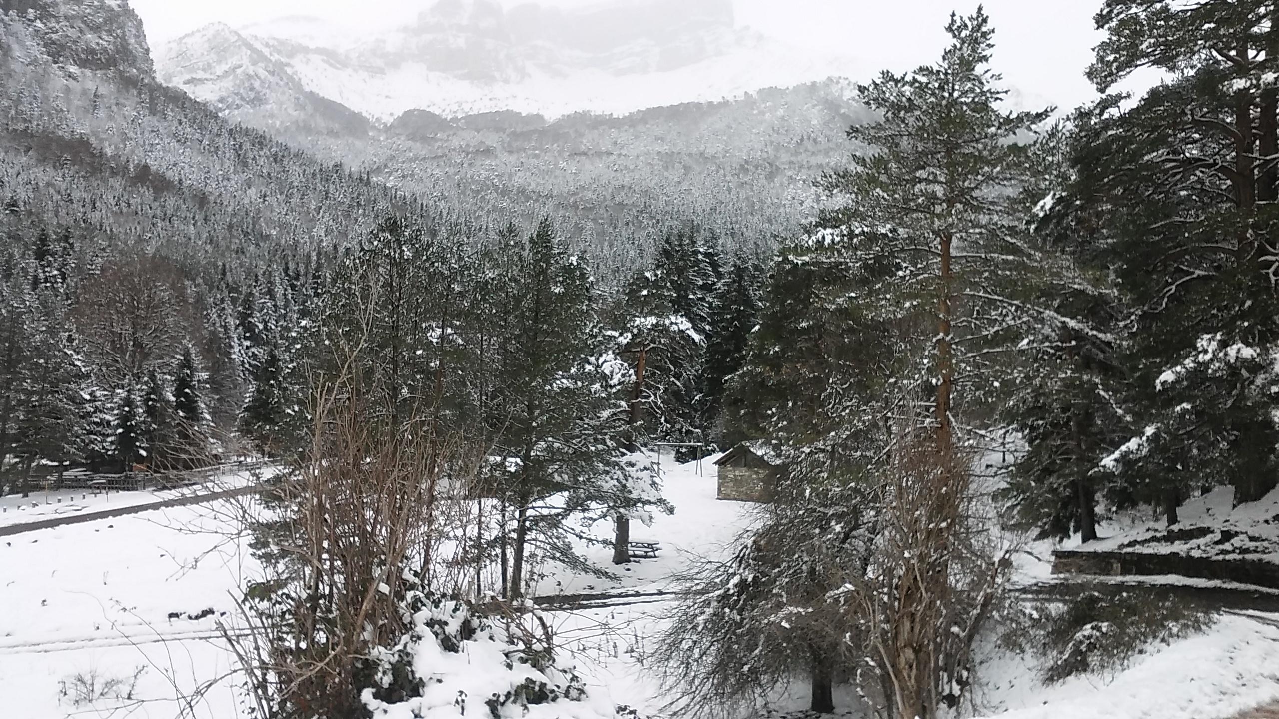File Nieve En La Selva De Oza Huesca Panoramio Jpg Wikimedia Commons