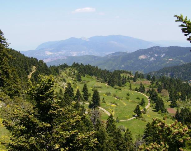 Mount Oeta - Wikipedia