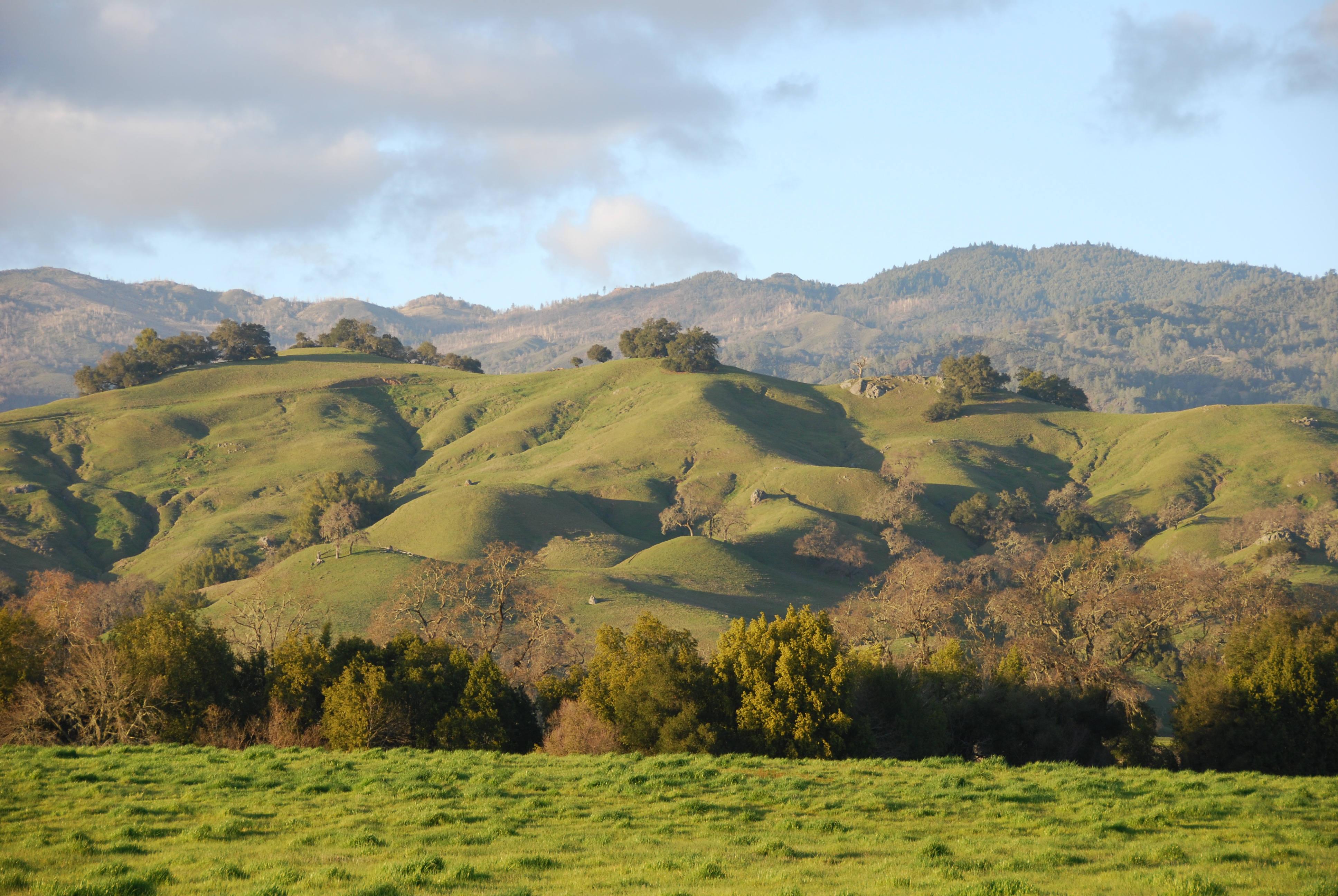 File:Rolling hills of ...