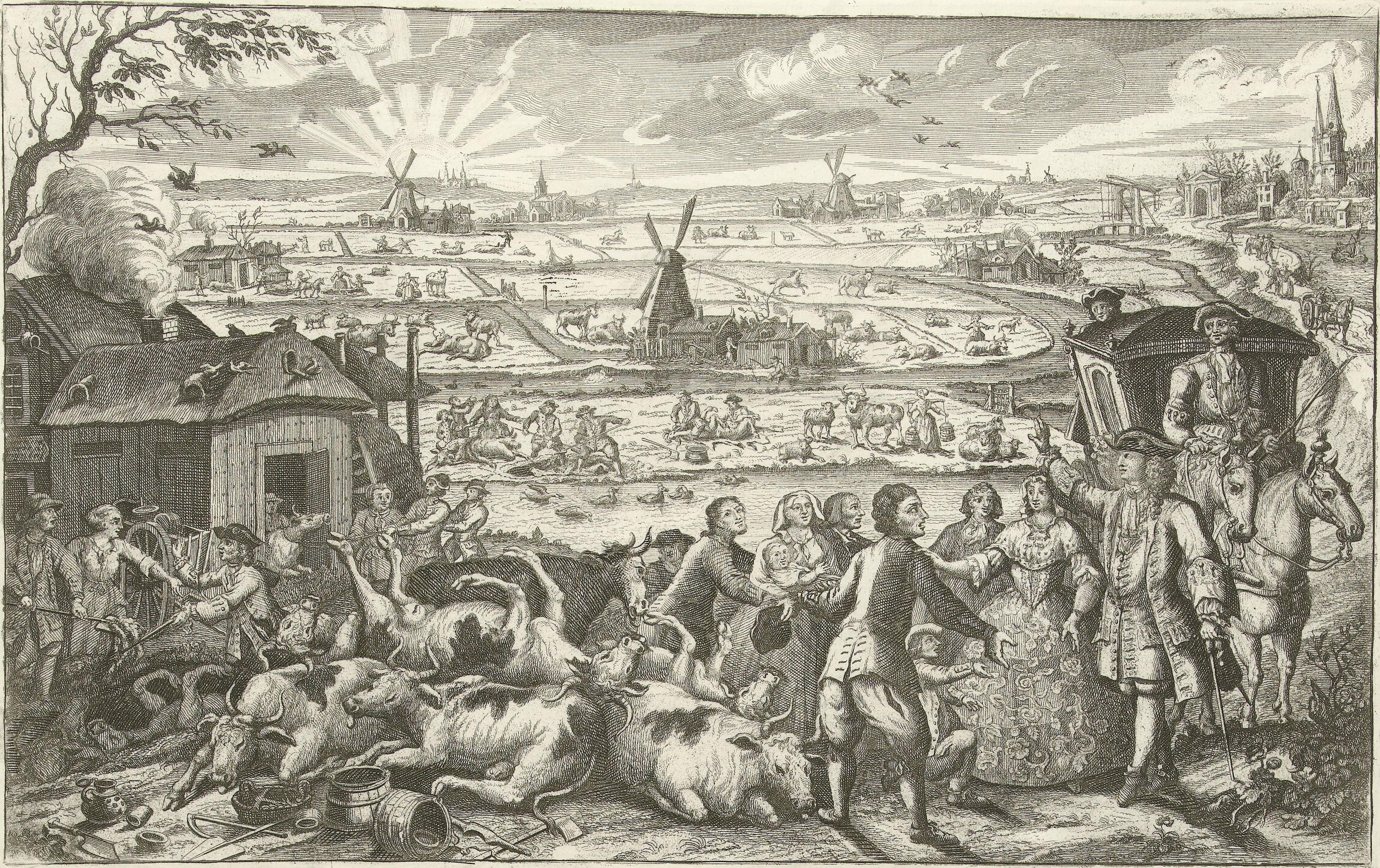 Bestand:Runderpest in Nederland 18e eeuw.jpg - Wikipedia