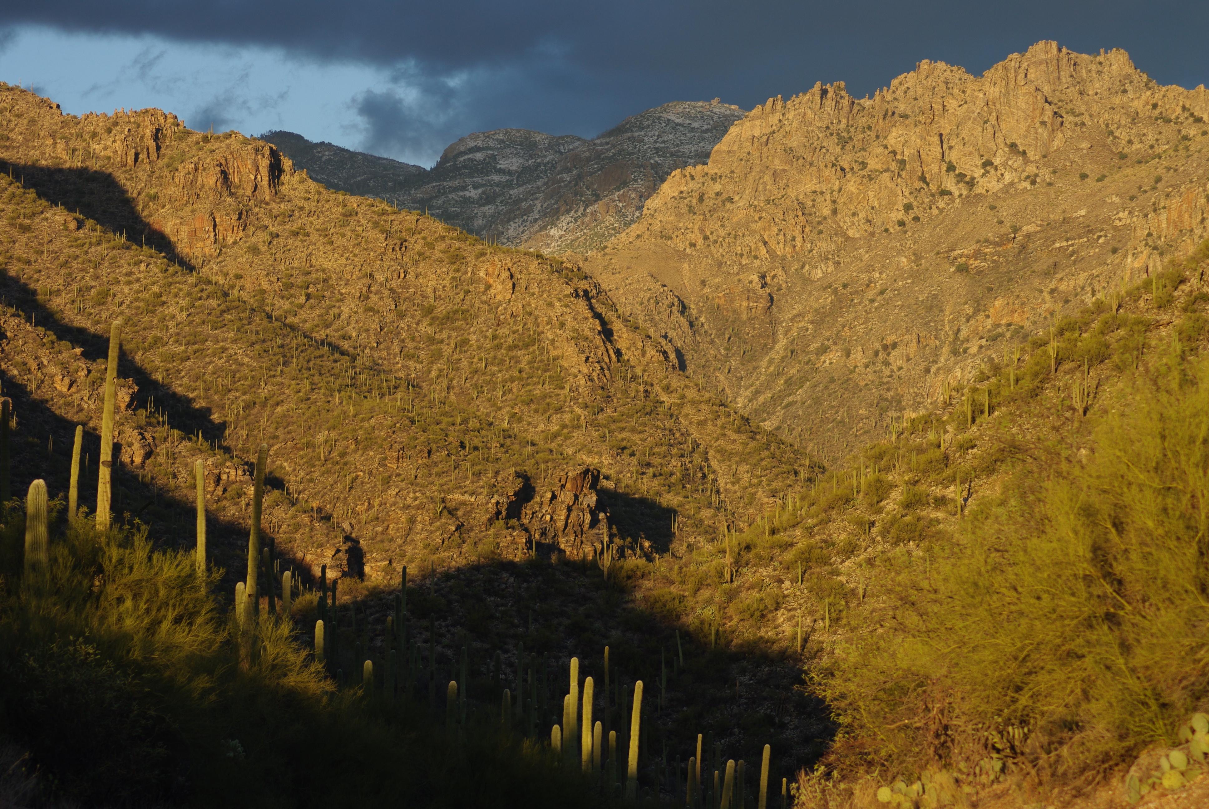 Sabino Canyon Sunset View.jpg