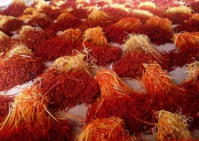 Saffron Crop.JPG